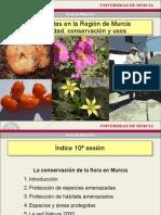 Conservacion Flora