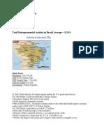 Brazilian Entrepreneurship