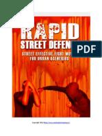 Street Fighting eBook