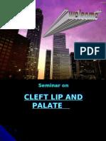 32072907 Cleft Lip Palate Pedo