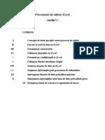 Procesorul de Tabele Excel Modul I Final