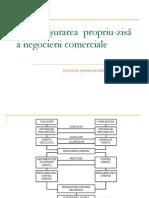 Tema3 Desfasurarea Negocierii Comerciale2012