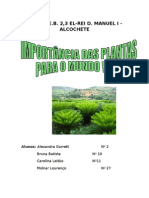 As Plantas-ciencias Da Natureza