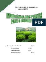 As Plantas-ciencias Da Natureza