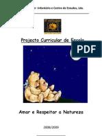 Proj.curricular Malmequer 2008-2009