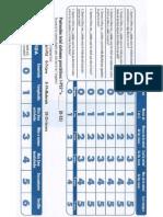 Escala Internacional de Sintomas en PDF