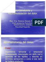 neuroanatmia_y_neurom.dolor-_modulo_aps
