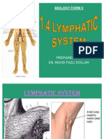 Sub 1.4 - Lymphatic System (Part 1)
