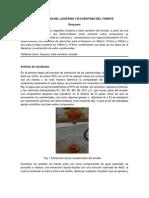 EXTRACCIÓN DEL LICOPENO Y B