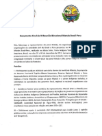 Documento Final Portugues