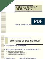 001 Auditoria Introd[1]