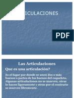 Las_Articulaciones RESUMEN