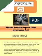 SIPROV Plan Rector