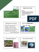 Introduccion2010