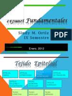 Tejido Epitelial Pseudo-Estratificado