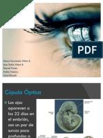 Embriologia Tercer Parcial Ojo