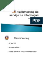 Flashmeeting no serviço de Informação Fernanda Lobo