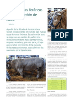 19 razas bovinas foraneas