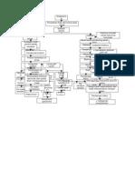 Patofisiologi Katarak