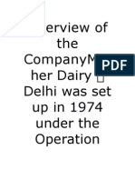 Overview of the Company Mother Dairy