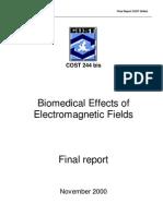 Bis Final Report