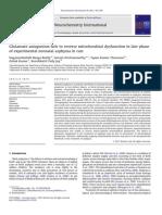 1 Neurochem Int 2011 Glutam Mito Asphyxia