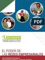 APOMIPE_ENTREVISTAS - Redes Empresariales_casos