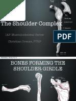 Shoulder Complex Anatomy