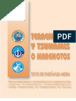 Documento Sobre Maremotos y Tsunamis