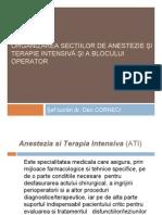 Organizarea sectiilor ATI