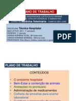 A1. Apresentação do Plano de Trabalho