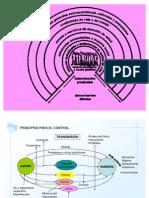 principios+epidemiologicos