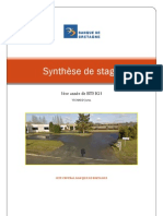Synthèse de stage