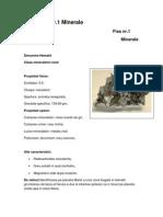 Fise Minerale 2012 PDF