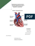 Cardiovascular ENF 2012