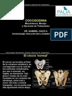 Dolor Coccigodinia