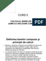 Curs 5
