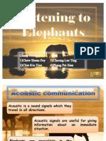 Listening to Elephants