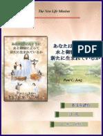 paulp_jp1  Japanese Edition 1