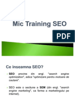 Mic Training SEO