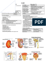 Physiology of Kidney (GFR to COUNTER CURRENT)
