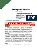 Aukanaw - La Ciencia Mapuche. El Divino Maestro