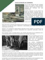 Efectos Del Desastre de Chernobyl