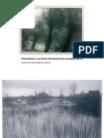 Pictoralismo y paisaje
