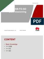 1+1_HSB-SD-FD_Commissioning-20090518-B