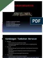 TUMBUHAN BERACUN 2