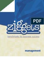 Ziggets Management Workbook