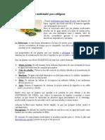 Fitoterapia Plantas Medicinales Para Adelgazar