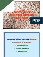 9 Etiologia - Hongos y Parasitos