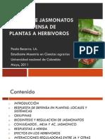 Defensa en Plantas-jasmonatos